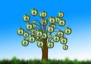 pieniądze nie rosną na drzewie